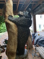 Bear Carving almost done.